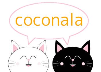 ココナラで「当たる占い師」を見つける方法!